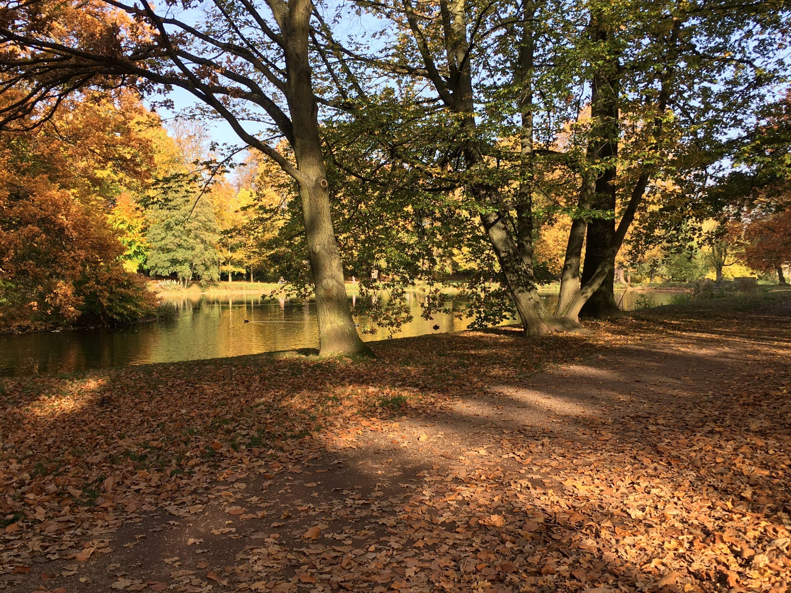 Park Gotha