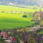 Blick vo der Mühlburg auf den Ort Mühlberg